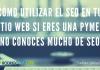 Cómo Utilizar el SEO en tu Sitio Web